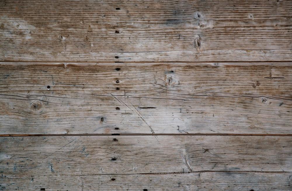 Plenty_web_wood_2.jpg