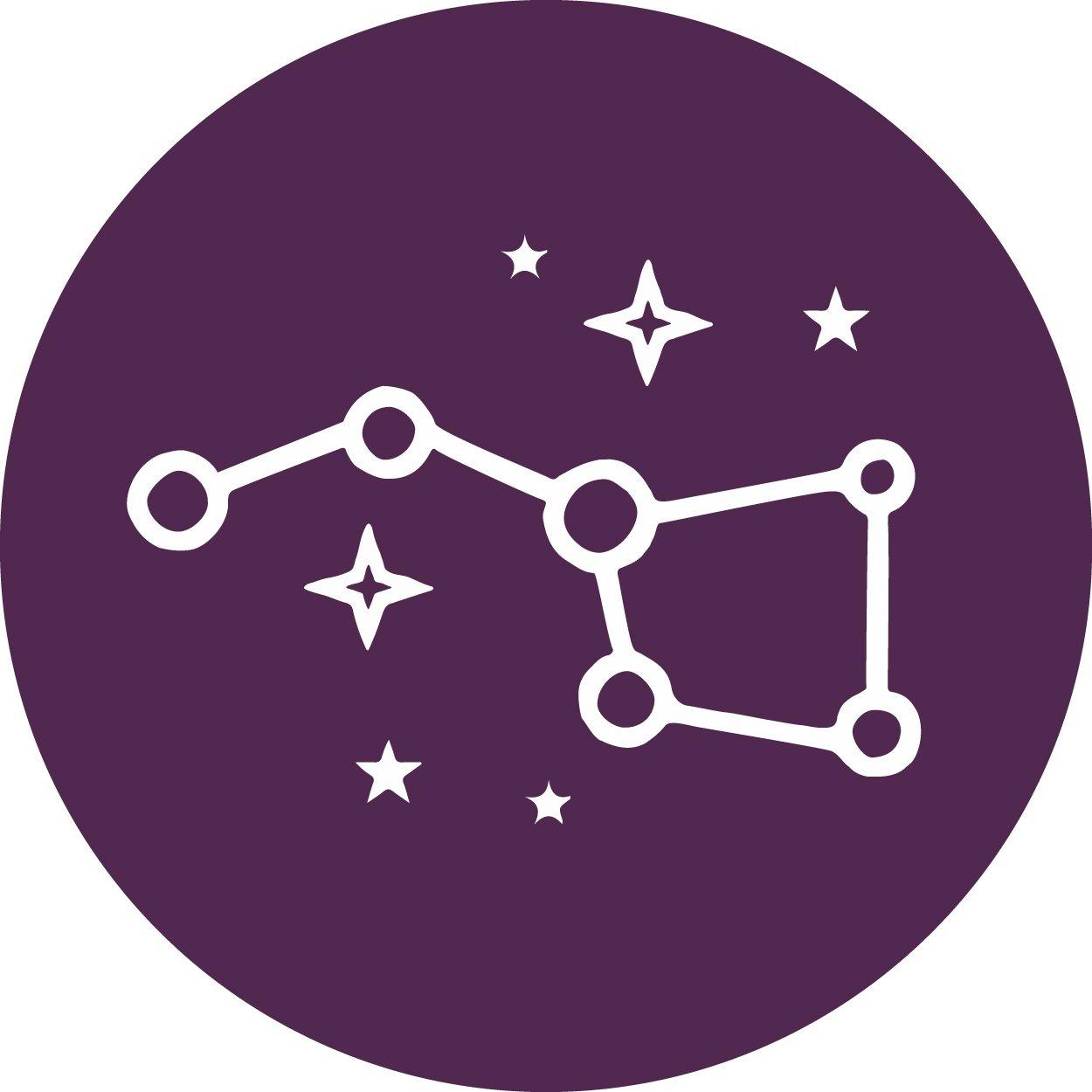 Pleidian-Icon-Purple-Circle.jpg
