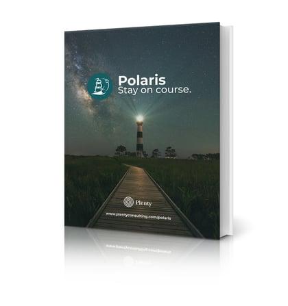 Polaris Download Cover 2020