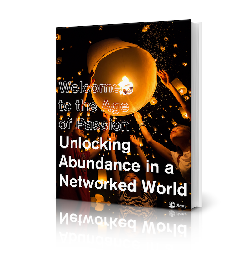 Unlocking Abundance in a Networked World eBook Cover.png