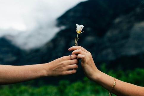 flower_hands.jpg