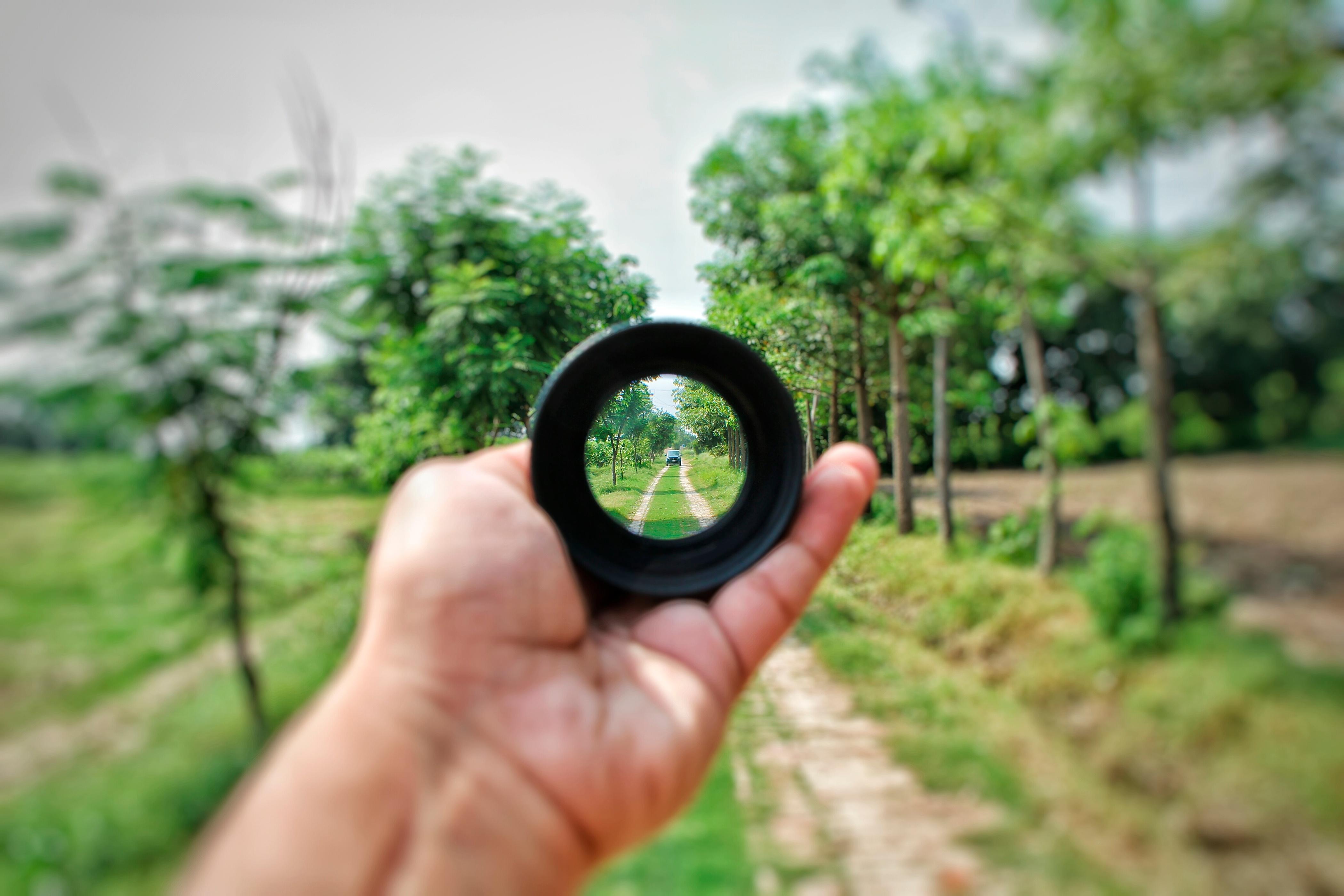 focus-hand.jpg