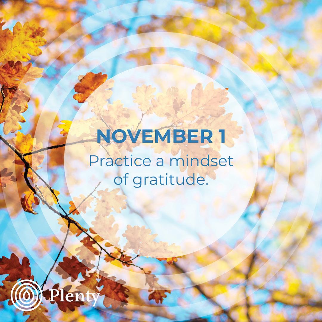 365 TIPS November