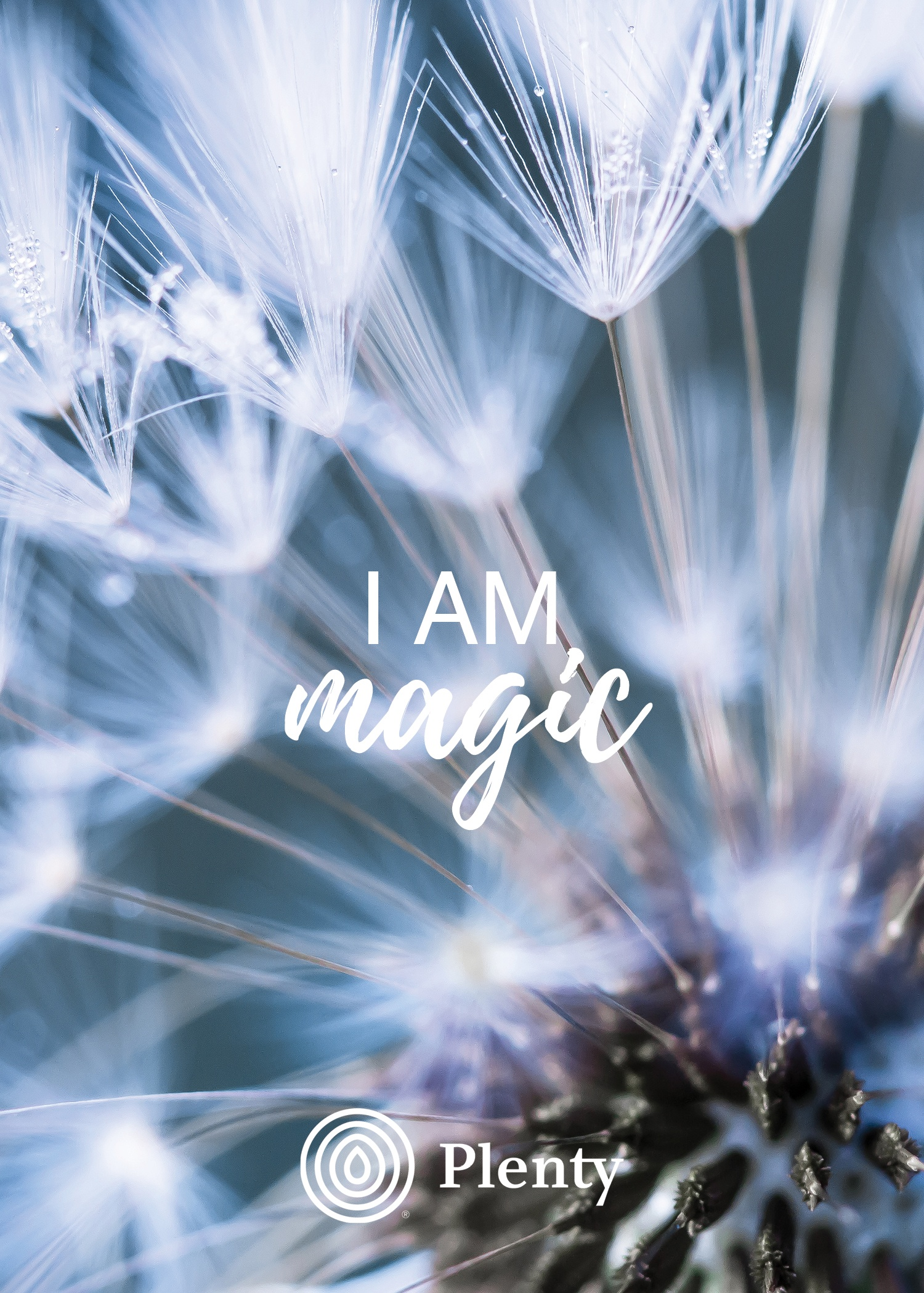 Summer I AM Magic V2