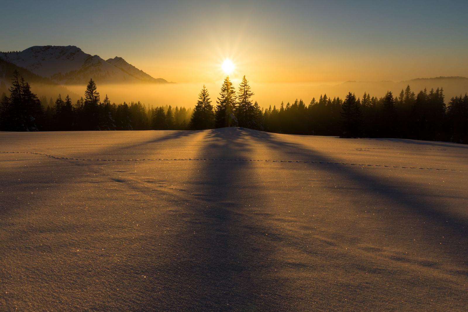 Winter Solstice 2019 1600px